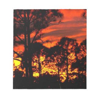 Puesta del sol con amarillo rojo de los pinos blocs