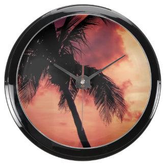 Puesta del sol con la palma reloj acuario