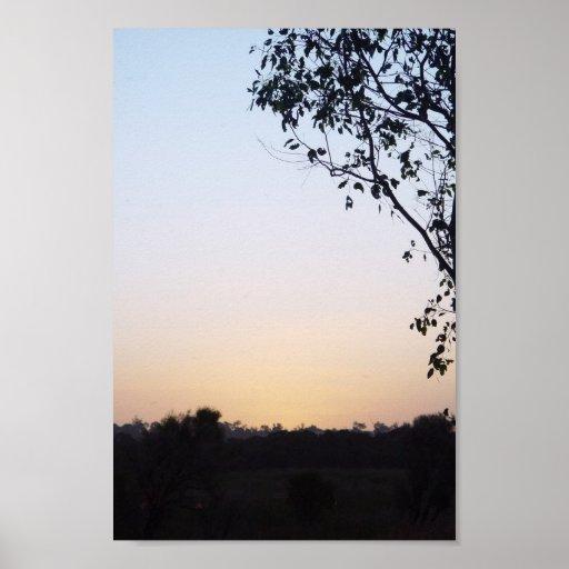 Puesta del sol con la silueta del árbol en Wannero Posters