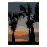Puesta del sol con las palmas, 116A Tarjeta