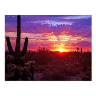 puesta del sol de Arizona Postal