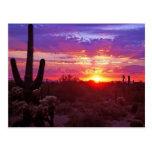 puesta del sol de Arizona Postales