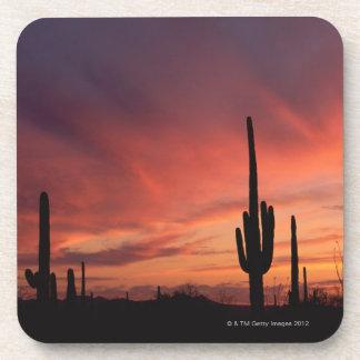 Puesta del sol de Arizona sobre los cactus del Posavasos De Bebida