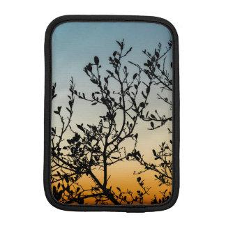 Puesta del sol de Austin en invierno Funda De iPad Mini