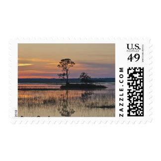 Puesta del sol de Carolina del Sur Timbre Postal