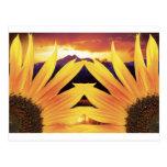 Puesta del sol de dos girasoles postal