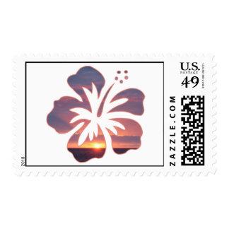 Puesta del sol de Kauai en una flor del hibisco Sello