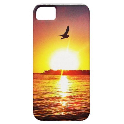 Puesta del sol de Key West iPhone 5 Case-Mate Carcasa