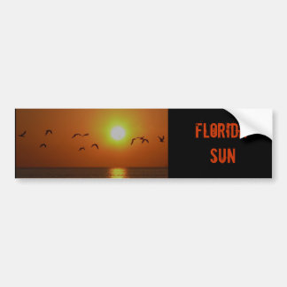 Puesta del sol de la Florida con la pegatina para  Pegatina Para Auto