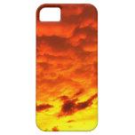 Puesta del sol de la Florida iPhone 5 Cobertura