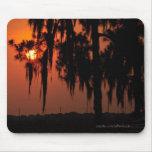 Puesta del sol de la Florida Alfombrilla De Ratones
