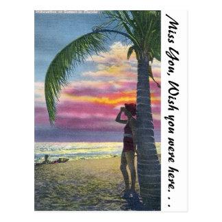 Puesta del sol de la Florida Tarjeta Postal