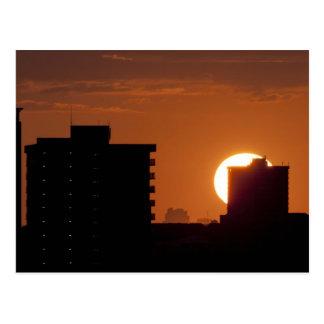 Puesta del sol de la Florida Postales