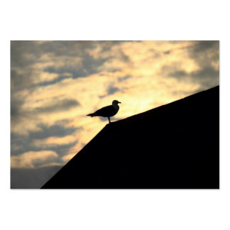 Puesta del sol de la gaviota de arenques plantilla de tarjeta de negocio