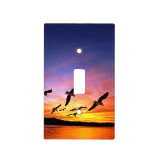 Puesta del sol de la gaviota - gaviotas del vuelo  placas para interruptor