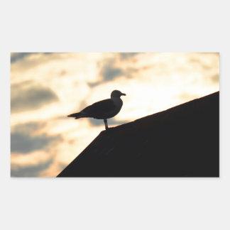 Puesta del sol de la gaviota rectangular pegatina