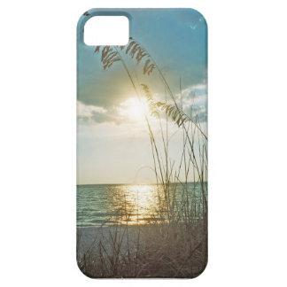 Puesta del sol de la isla del tesoro iPhone 5 carcasas
