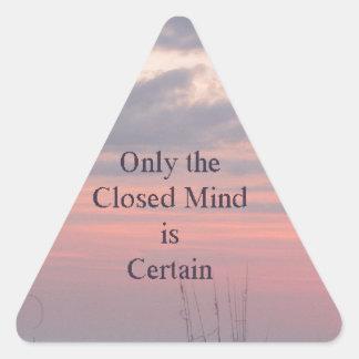 Puesta del sol de la mente de decano Spanley Quote Pegatina Triangular