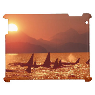 Puesta del sol de la orca generación del iPad 2 3