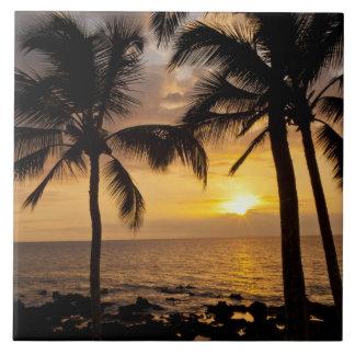 Puesta del sol de la palmera azulejo cuadrado grande