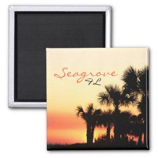 Puesta del sol de la palmera de Seagrove la Florid Imán Cuadrado