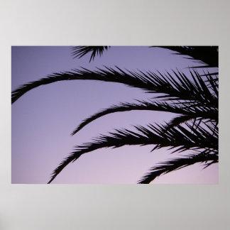 Puesta del sol de la palmera del paraíso poster