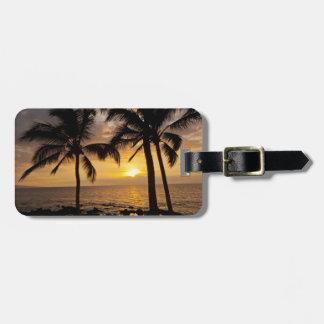 Puesta del sol de la palmera etiquetas para maletas