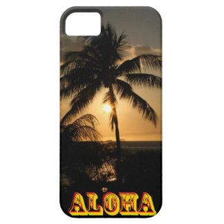 Puesta del sol de la palmera iPhone 5 carcasas