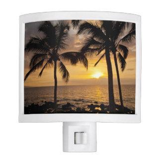 Puesta del sol de la palmera lámparas de noche