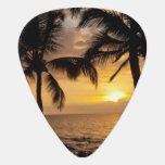 Puesta del sol de la palmera púa de guitarra