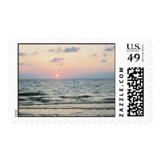Puesta del sol de la playa de Clearwater Estampillas