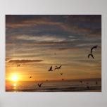 Puesta del sol de la playa de la Florida con los p Impresiones