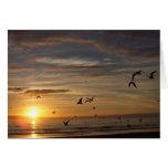 Puesta del sol de la playa de la Florida con los p Tarjeton