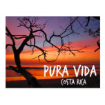 Puesta del sol de la playa de Pura Vida Costa Rica Postal