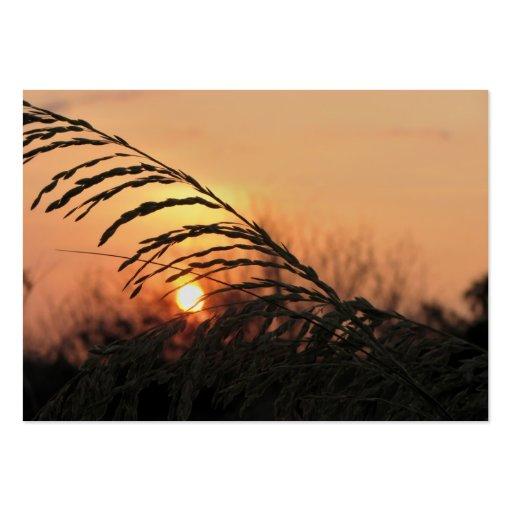 Puesta del sol de la playa en la Florida - ACEO 15 Tarjetas De Visita Grandes