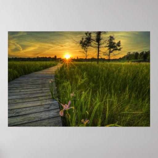 Puesta del sol de la pradera de Irwin Posters