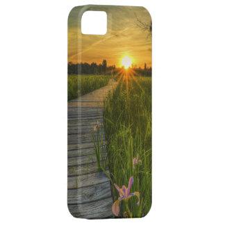 Puesta del sol de la pradera iPhone 5 protector