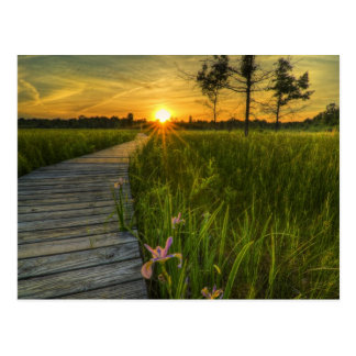 Puesta del sol de la pradera postales
