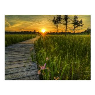 Puesta del sol de la pradera postal