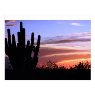 Puesta del sol de las montañas de Catalina Tarjetas Postales