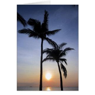 puesta del sol de las palmas tarjeton