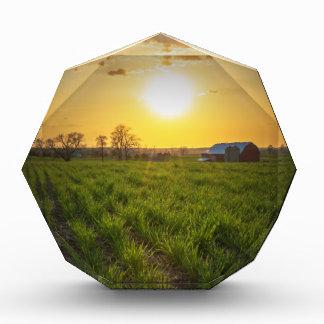 Puesta del sol de las tierras de labrantío