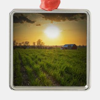Puesta del sol de las tierras de labrantío adorno navideño cuadrado de metal