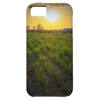 Puesta del sol de las tierras de labrantío funda para iPhone SE/5/5s