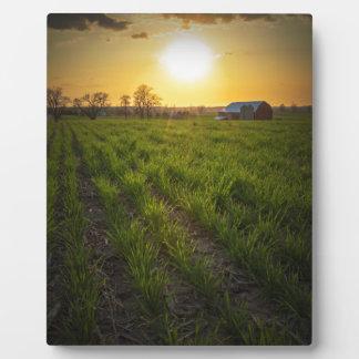 Puesta del sol de las tierras de labrantío placa para mostrar