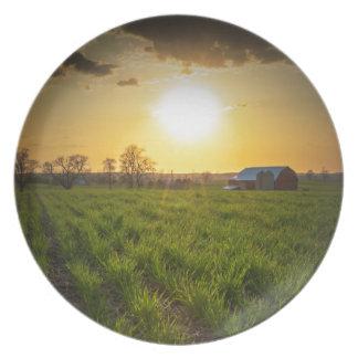 Puesta del sol de las tierras de labrantío plato para fiesta