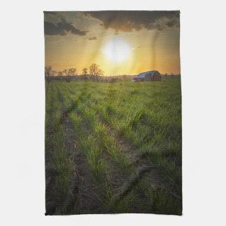 Puesta del sol de las tierras de labrantío toalla de cocina