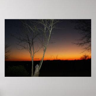 Puesta del sol de Mississippi de Allison Póster