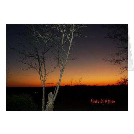 Puesta del sol de Mississippi de Allison Tarjeton