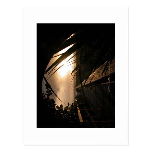 Puesta del sol de Nápoles Postal